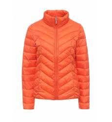 куртка Dorothy Perkins 92302212