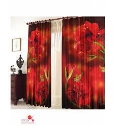 Комплект штор, 1,50 х 2,70 (2 шт) ТамиТекс, цвет мультиколор 40008893
