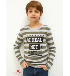 Джемпер Acoola для мальчика, цвет хаки 42230994