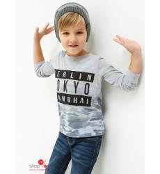 Джемпер Acoola для мальчика, цвет серый 42714723