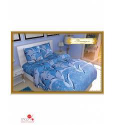 Комплект постельного белья, 2-спальный Этель, цвет голубой 42753645