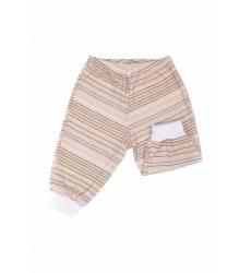 Брюки, шорты и юбки Брюки Euromama